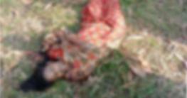 সাতক্ষীরায় স্ত্রীকে কুপিয়ে হত্যার পর স্বামীর আত্মহত্যা