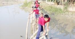 বিপজ্জনক সাঁকোই স্কুলে যাওয়ার একমাত্র ভরসা শিশুদের