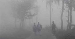 চুয়াডাঙ্গায় শৈত্যপ্রবাহ অব্যাহত, তাপমাত্রা ৮.৪ ডিগ্রি সে.
