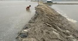 পাউবোর বেড়িবাঁধ উপচে লোকালয়ে পানি : ভাঙ্গন আতঙ্কে দশহালিয়াবাসী