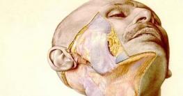 পৃথিবীর সেরা এনাটমি গ্রন্থের পেছনে রয়েছে করুণ ইতিহাস