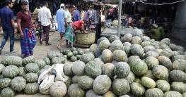 রাজবাড়ীতে মিষ্টি কুমড়ার কেজি ১৪ টাকা