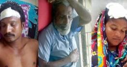 পাইকগাছায় জমি দখলের চেষ্টা : প্রতিপক্ষের হামলায় নারীসহ আহত ৩