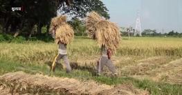 খাদ্য সংকট মোকাবেলায় বিভিন্ন উদ্যোগ নিয়েছে খুলনা জেলা প্রশাসন