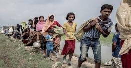 আইনি লড়াইয়ে গাম্বিয়াকে পাঁচ লাখ ডলার দেবে বাংলাদেশ
