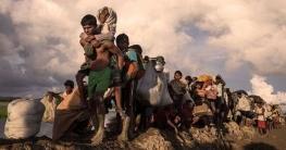 রোহিঙ্গা সংকটে জাতিসংঘেরদৃঢ় ভূমিকার আহ্বান জানালেন  প্রধানমন্ত্রী