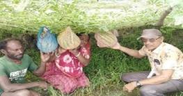 বটিয়াঘাটায় বর্ষা মৌসুমে ব্যাপক হারে তরমুজ চাষ হচ্ছে