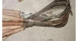 দিঘলিয়ায় ৮০ পিচ রামদাসহ দেশী অস্ত্র উদ্ধার