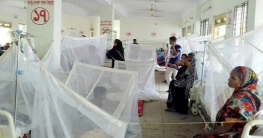দেশে ডেঙ্গুতে আক্রান্ত হয়ে আরও ১৬৩ রোগী হাসপাতালে